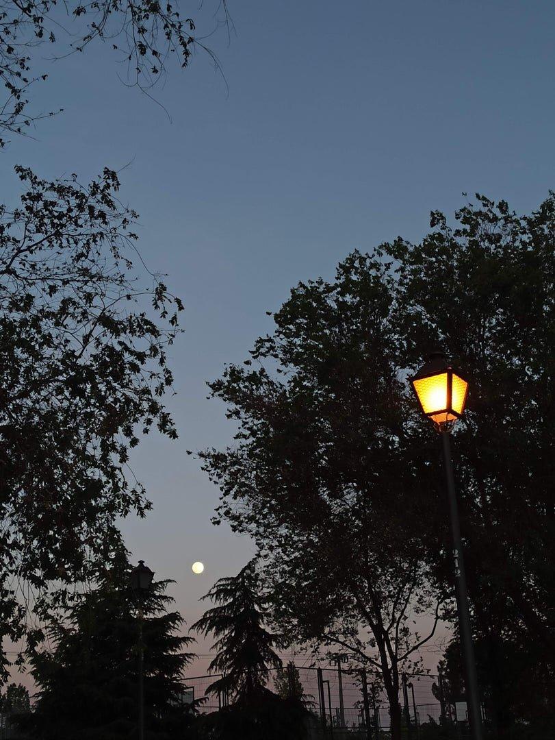 Foto nocturna farola luna